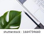 a large green sheet  pen ... | Shutterstock . vector #1664734660