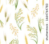 Cereal Plants Seamless Pattern. ...
