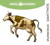 breeding cow. animal husbandry. ...   Shutterstock .eps vector #1664774470