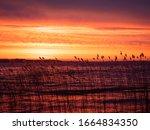 Colorful Spectacular Sunrise On ...