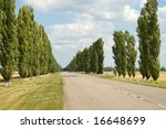 rural covered road with trees along way - stock photo