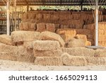 Piled Stacks Of Dry Straw...