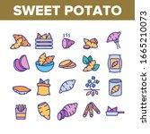 sweet potato batata collection... | Shutterstock .eps vector #1665210073