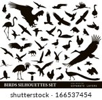 Stock vector bird vectors silhouettes collection 166537454