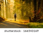 Stock photo rear view of young woman walking with dog on road through colorful autumn forest 166543169