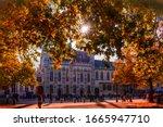 The Sun Shines Through Autumn...