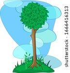 vector green dog rose tree on... | Shutterstock .eps vector #1666416313