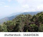 landscaped formal garden. park.   Shutterstock . vector #166643636