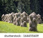 Old Fashioned Haystack At A...