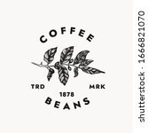 coffee beans logo template for... | Shutterstock .eps vector #1666821070