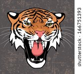 tiger  angry tiger vector... | Shutterstock .eps vector #166751393