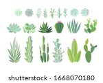 Cactus And Succulent Plants...
