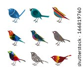 collection of colorful birds ... | Shutterstock .eps vector #166819760