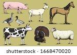 Farm Animals. Pig Goat Horse...