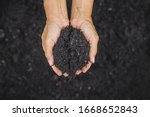Hand Holding Soil Hand Dirty...
