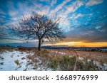 Sunrise With A Lone Tree On A...