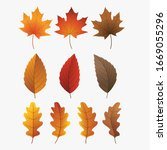 colorful autumn leaves set ... | Shutterstock .eps vector #1669055296