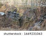 Abandoned Vintage Farm Horse...