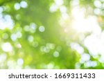 green bokeh abstract background.... | Shutterstock . vector #1669311433