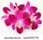 pink orchids | Shutterstock . vector #166949774