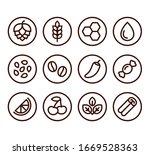 beer ingredient labels icon set.... | Shutterstock .eps vector #1669528363