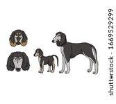 cute cartoon saluki dog and...   Shutterstock .eps vector #1669529299