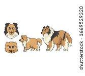 cute cartoon rough collie dog...   Shutterstock .eps vector #1669529320