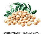Pile Of Chickpeas With Leaves...