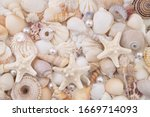Seashells  Pearls And Starfish...