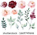 set watercolor flowers blossom  ... | Shutterstock . vector #1669749646