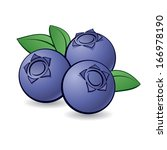 Cartoon blueberry with green leaves on white background. - stock vector