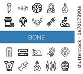 bone icon set. collection of...   Shutterstock .eps vector #1670173906