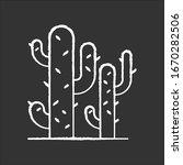 cacti chalk white icon on black ... | Shutterstock .eps vector #1670282506