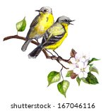 Two Song Birds On Spring Branc...