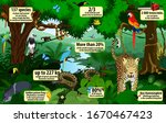 vector rainforest  infographic... | Shutterstock .eps vector #1670467423