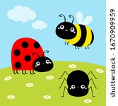 Bee Bumblebee  Spider  Ladybug...