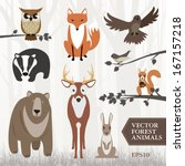 Stock vector set of vector illustrated forest animals 167157218