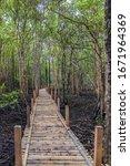 Small photo of Bamboo walkway bridge in Tha Ra Nae Mangrove Forest, Trat Province, Thailand