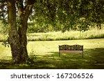 Bench Under Lush Shady Tree In...