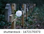 Very Old Cemetery With Wooden...
