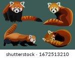 red panda cat bear collection ... | Shutterstock .eps vector #1672513210