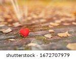 One Heart On Autumn Path....
