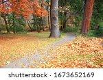 Lithia Park In Autumn  Oregon...