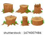 Collection Of Tree Stumps ...