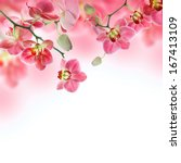 Floral Background Of Tropical...