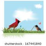 Robin And Cardinal Spring...