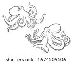 Set Of Octopus. Collection Of...