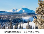 Snowy boreal forest taiga winter wilderness landscape of Yukon Territory, Canada, north of Whitehorse