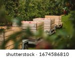 Transport Of Wooden Crates Full ...