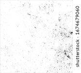 vector grunge black and white... | Shutterstock .eps vector #1674679060